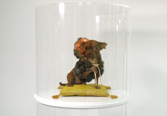 hond realistisch sculptuur roadkill